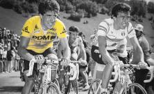Pedro Delgado en el Tour de Francia.