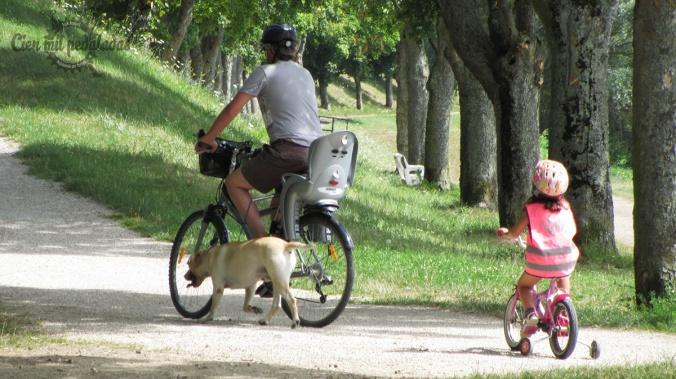 cienmilpedaladas_aprende_a_montar_en_bici